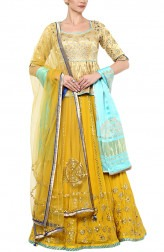 Indian Fashion Designers - Devnaagri - Contemporary Indian Designer - Distinct Mustard Yellow Lehenga - DEV-AW16-LN-27