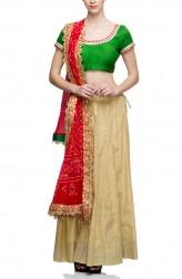 Indian Fashion Designers - Rang - Contemporary Indian Designer - Green and Gold Lehenga - RNG-AW16-2-061