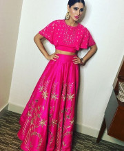 Nargis Fakhri in a gorgeous outfit by Anita Dongre