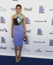 Freida Pinto in a Bibhu Mohapatra dress for the Film Independent event Picture: Instagram