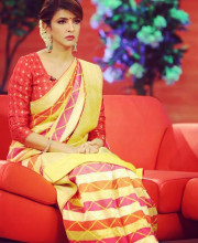 Lakshmi Manchu wearing an Uppada silk sari with phulkari inspired handloom weaving by Asha Gautam
