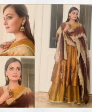 Dia Mirza in a Copper and Mustard Coloured Traditional Outfit