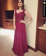 Zareen Khan at the TOIFA Awards
