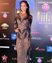 Lisa Haydon in a Namrata Joshipura Dress at IIFA 2013