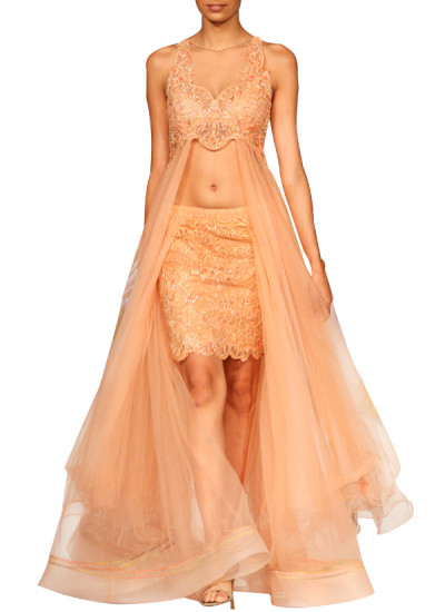 Indian Fashion Designers - Mandira Wirk - Contemporary Indian Designer - Gowns - MW-SS15-MW-009 - Stylish Peach Net Gown