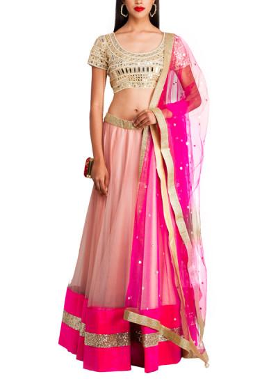 Priti Sahni  Nude And Pink Coloured Net Lehenga  Shop -1541