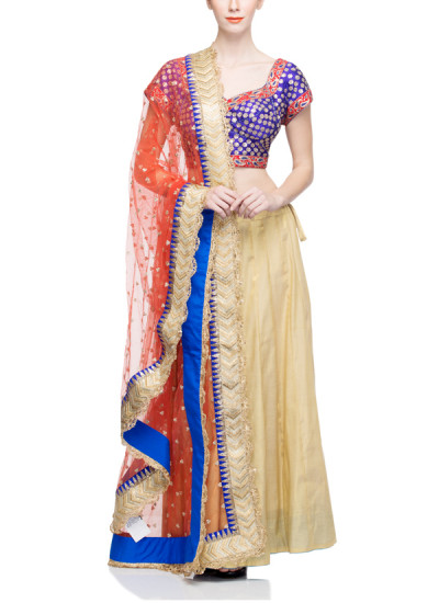 Indian Fashion Designers - Rang - Contemporary Indian Designer - Lovely Beige Lehenga  - RNG-AW16-2-059