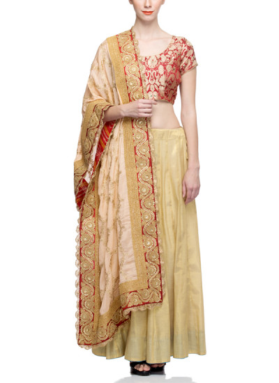 Indian Fashion Designers - Rang - Contemporary Indian Designer - Timeless Gold Lehenga - RNG-AW16-2-060