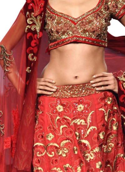 Red Applique Embroidered Lehenga by Narendra Kumar for Indian Brides