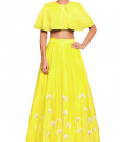 Indian Fashion Designers - Salt and Spring by Sonam Jain - Contemporary Indian Designer - Embroidered Yellow Skirt - SAS-AW17-T1003-SK1003